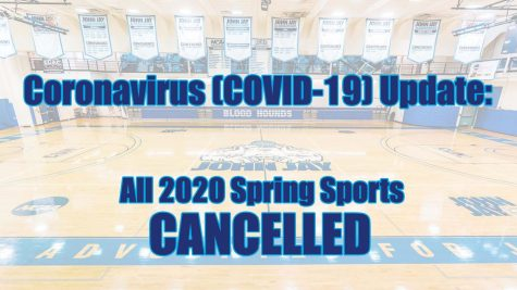 Spring sports derailed due to COVID-19